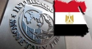 fmi-eco-egypte